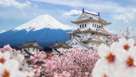 Обиколка на Япония - мистиката на самураите в модерния  свят на технологиите